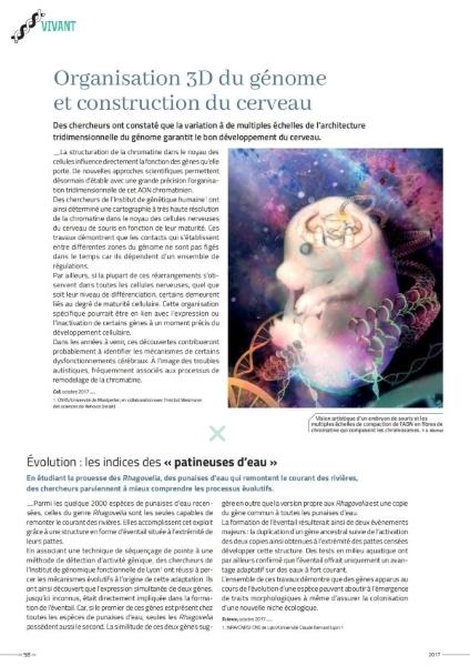 Rapport_CNRS2017_Vivant 2