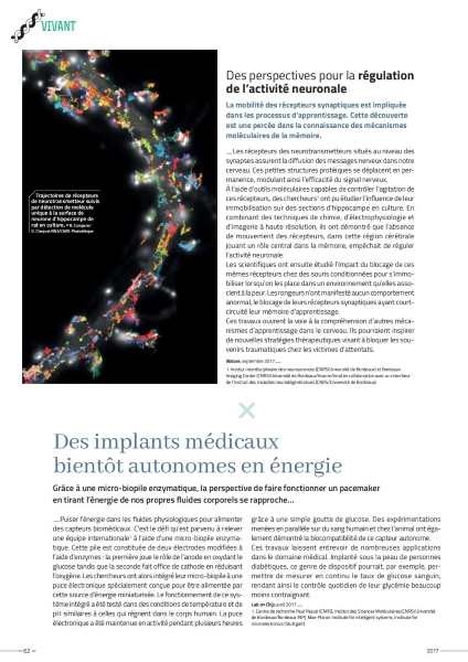 Rapport_CNRS2017_Vivant 5