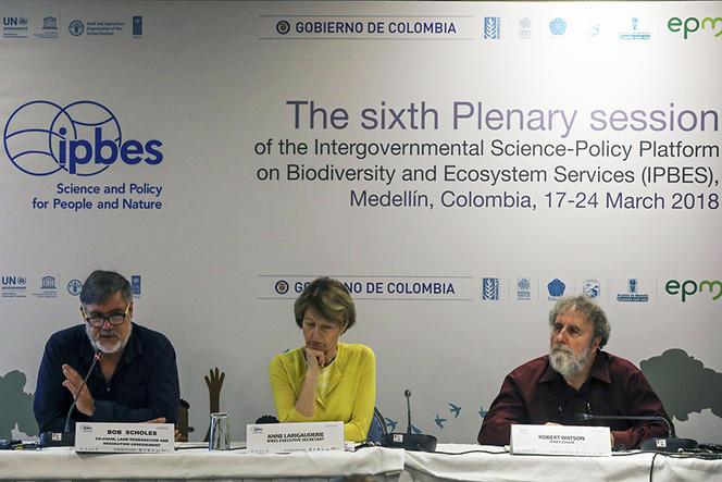 COLOMBIA-ENVIRONMENT-BIODIVERSITY-SUMMIT